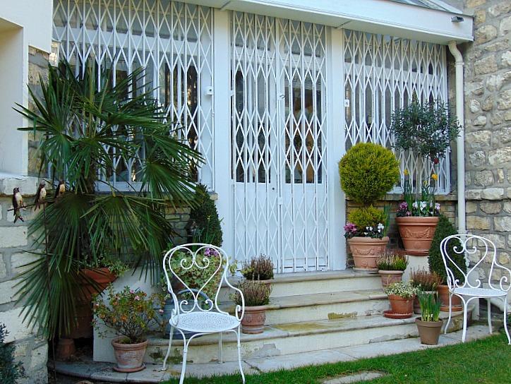 Rosliny doniczkowe w mieszkaniu, ktore oczyszczają powietrze
