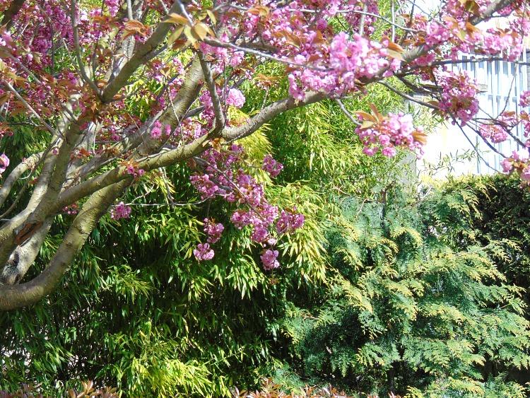 Jak dbac o cerę na wiosnę?