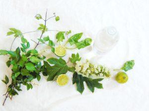 Ekologiczne środki czystości OCET